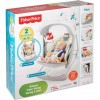 fisher price deluxe along swing &seat